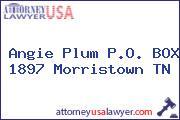 Angie Plum P.O. BOX 1897 Morristown TN