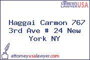 Haggai Carmon 767 3rd Ave # 24 New York NY
