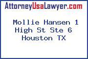 Mollie Hansen 1 High St Ste 6 Houston TX