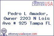 Pedro L Amador, Owner 2203 N Lois Ave # 925 Tampa FL
